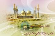 مرجعية الإمام محمد الجواد (ع)