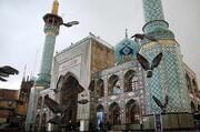 گزشتہ چند سالوں میں مختلف ممالک کے متعدد افراد امامزادہ صالح(ع) کے مزار پر حلقہ بگوش اسلام ہوئے