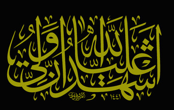 """Why do the Shia say """"اشهد انّ علیاً ولی الله"""" (I testify that Ali is the Divine guardian) in the Prayer Call (Azan) and certify the guardianship of Ali (a.s)?"""
