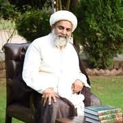 انصاف پسند اور باوقار معاشرے کی تشکیل کے لیے فکرِ علی (ع) سے استفادہ کرنے کی ضرورت، علامہ راجہ ناصر