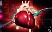 सबसे स्वस्थ हृदय