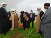 تصاویر/ درختکاری جمعی از روحانیون کهگیلویه و بویراحمد