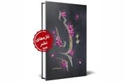 کتاب «حیدر» روایتی از ۹ سال زندگی امام علی(ع) با حضرت زهرا (س)