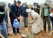 دین مبین اسلام درخت را نماد آبادانی و مظهر زندگی می داند