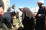 تصاویر/ مراسم درختکاری در مدرسه امام شافعی سنندج