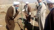 تصاویر / درختکاری طلاب در تبریز