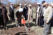 تصاویر / غرس درخت توسط مسئولین حوزه علمیه بناب