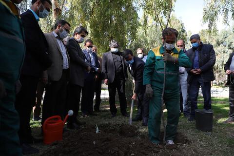 تصاویر/نهال کاری بوستان بنیادی توسط اصحاب رسانه