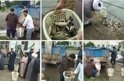 بهرهبرداری از استخر چندمنظوره پرورش ماهی در مدرسه علمیه فیضیه مازندران