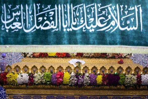 تزیین حرم امام حسین (ع) و حضرت عباس (ع)