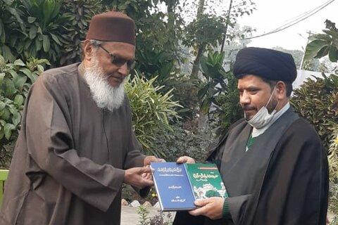 مولانا سید مراد رضا رضوی