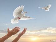 آزادی ۳۴۲ زندانی غیرعمد و محکوم مالی در آذربایجان شرقی