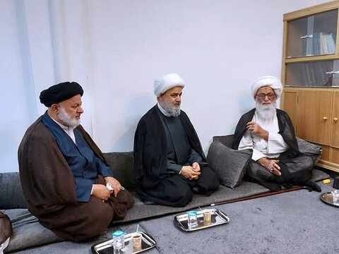 حجت الاسلام والمسلمین حمید شهریاری دبیرکل مجمع در دیدار با آیت الله بشیر نجفی