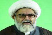 امام حسن (ع) کا ہر عمل حکمت و دانش سے لبریز، علامہ راجہ ناصر