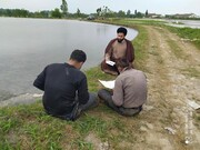 تصاویر شما/ تلاوت قرآن به همراه کشاورزان توسط یک طلبه