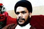 کیا امام (عج) کے ظہور کے لئے صرف دعا کافی ہے، مولانا تقی عباس رضوی