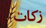 ۶۴۵ پایگاه کمیته امداد زکات فطریه مردم استان بوشهر را جمع آوری می کنند