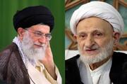 فیلم | دعایی که مرحوم آیتالله بهجت به رهبر معظم انقلاب توصیه کردند