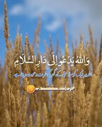 تقویم حوزہ:۱۲ شوال المکرم۱۴۴۲