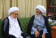 نجف اشرف کے دو عظیم مرجع کی ملاقات اورامت مسلمہ کےفلاح و بہبود کی خاطر بارگاہ الہی میں دعائیں