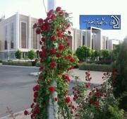 پذیرش بدون آزمون در مقطع دکتری در دانشگاه وابسته به دفتر تبلیغات اسلامی