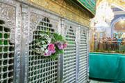 تصاویر/ قم میں روضہ حضرت معصومہ (س) کو پھولوں سے سجایا گیا