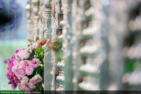 بالصور/ تزيين ضريح السيدة فاطمة المعصومة بنت الإمام الكاظم عليها السلام بالورود والأزهار ابتهاجا بولادتها بقم المقدسة