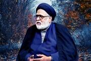 इस्लाम की लोकतांत्रिक व्यवस्था खतरे से बाहर आ गई , मौलाना सफ़ी हैदर