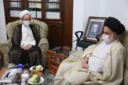تصاویر/ دیدار رئیس موسسه آموزشی و پژوهشی امام خمینی(ره) با آیت الله حسینی بوشهری