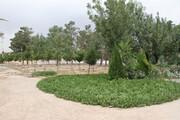 مسجد مقدس جمکران میں 15،000 میٹر پارک کی تعمیر