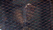 چند تن از اعضای اخوان المسلمین به حبس ابد محکوم شدند