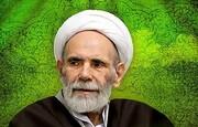 فیلم| خصوصیات شب و روز عرفه از زبان آیت الله آقا مجتبی تهرانی (ره)
