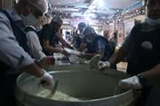اربعین و توزیع ۵۰۰۰ پرس غذای گرم توسط موکب نجف اشرف یاسوج