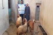 توزیع گوشت میان روستائیان نیازمند کرمانشاه