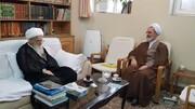 دیدار مدیر حوزه های علمیه با آیت الله العظمی صافی