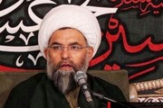 اسلامی دنیا میں عدم اتحاد و وحدت کی وجوہات؛ حجۃ الاسلام بہاری کا اہم خلاصہ