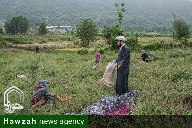از اشتغال زایی در ۸ روستا تا جذب اعتباز ۳ میلیاردی برای رفع مشکل کم آبی + عکس