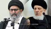 رئیس شورای علمای شیعه پاکستان ارتحال آیتالله حکیم را تسلیت گفت