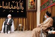 تصاویر / دیدار وزیر اطلاعات یا آیت الله العظمی نوری همدانی