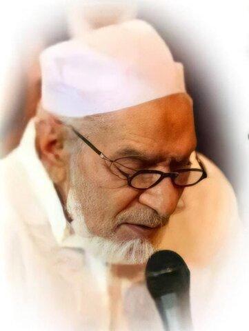 مولانا سید بیدار حسین