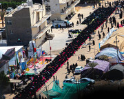 بالصور/ طريق (ياحسين) بين كربلاء والنجف يشهد اقامة اكبر صلاة جماعة موحدة