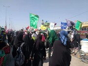 تصاویر/ پیاده روی زائران حسینی در مسیر کربلا - ۶