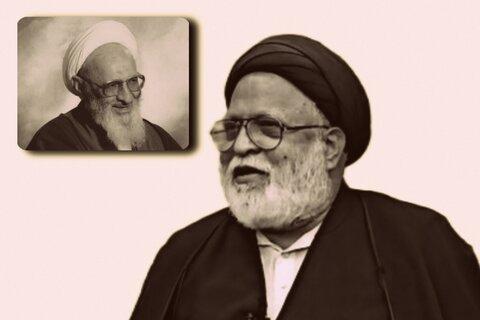 مولانا سید صفی حیدر زیدی