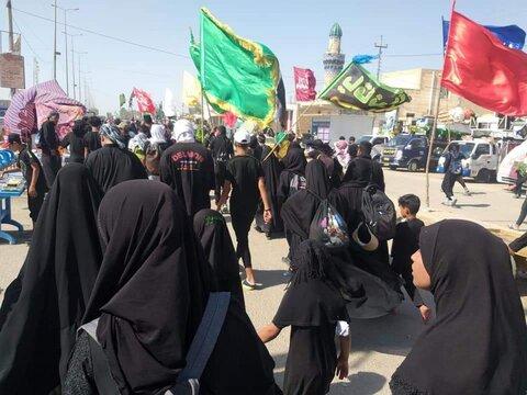 پیاده روی زائران حسینی در مسیر کربلا - ۶