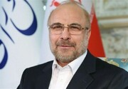 رئیس مجلس شورای اسلامی فردا به دیدار مراجع می آید