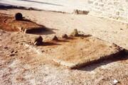 جود و سخا کے پیکر امام حسن مجتبی علیہ السلام