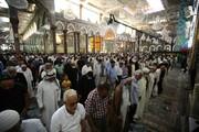از سرگیری نماز جماعت حرم امام حسین(ع) به امامت نماینده آیتالله سیستانی + تصاویر
