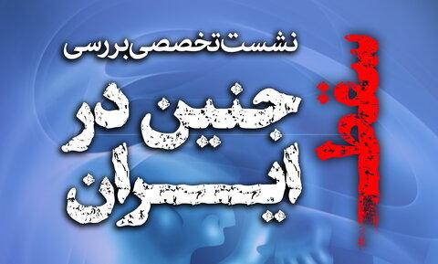 نشست تخصصی بررسی مسئله سقط جنین در ایران