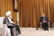 تصاویر / دیدار وزیر بهداشت با آیت الله العظمی نوری همدانی
