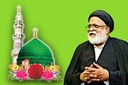 عالم اسلام کی مشکلات کا واحد حل وحدت میں ہے، مولانا سید صفی حیدر زیدی